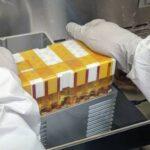 Швейцарские ученые будут выращивать на МКС искусственные органы человека