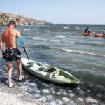 Россия натравила поумневших медуз на Украину?