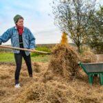 Приключения волонтеров на ферме: «Для животноводства слишком жалостливая»